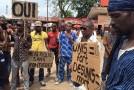 Fête de l'UA : Les artistes Guinéens réclament l'Instauration d'un Etat fédéral d'Afrique.