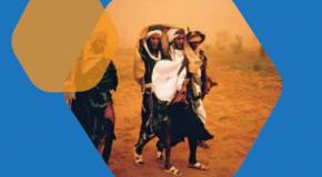 Tourisme : Le CITAO 2018 prévu en juin au Niger !